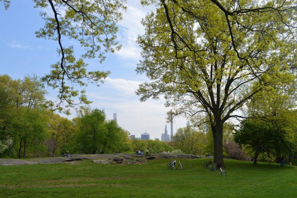 セントラルパークからの景色