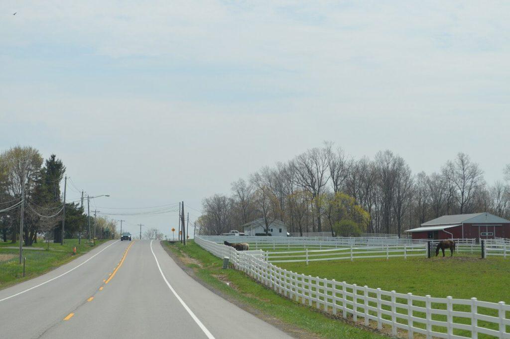 ニューコロンビアへ向かう田舎道