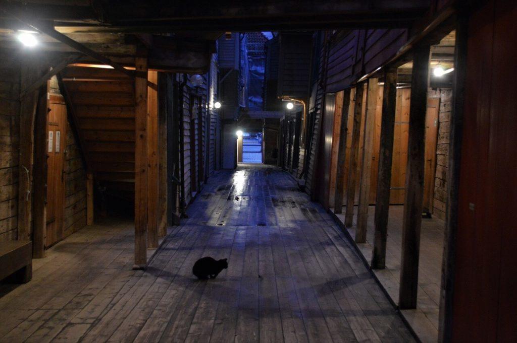 ノルウェーのブリッゲンの町並と黒猫のジジ