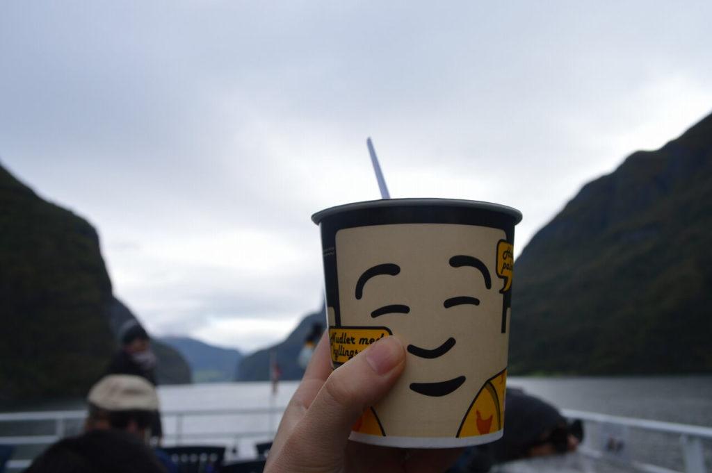ノルウェーのソグネフィヨルドツアーで食べたラーメン