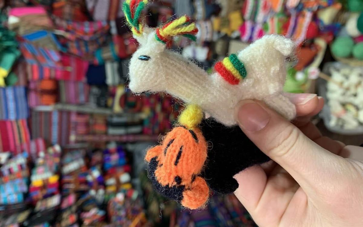 ラパスの魔女通りで買ったお土産用の指人形
