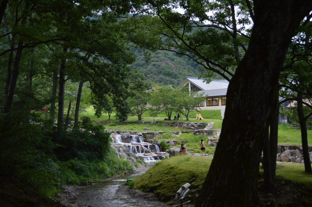 マキノ高原キャンプ場の林間サイト