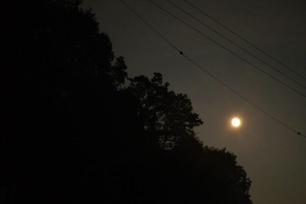 スノーピーク箕面キャンプフィールドの夜