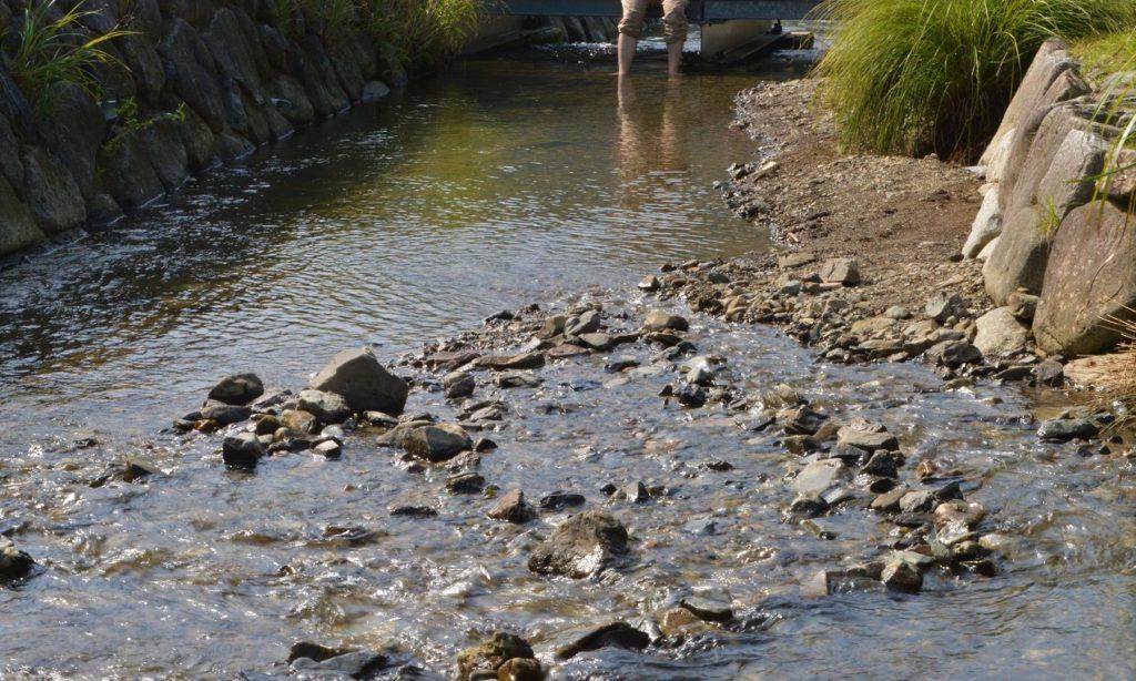 スノーピーク箕面キャンプフィールドの水遊び場