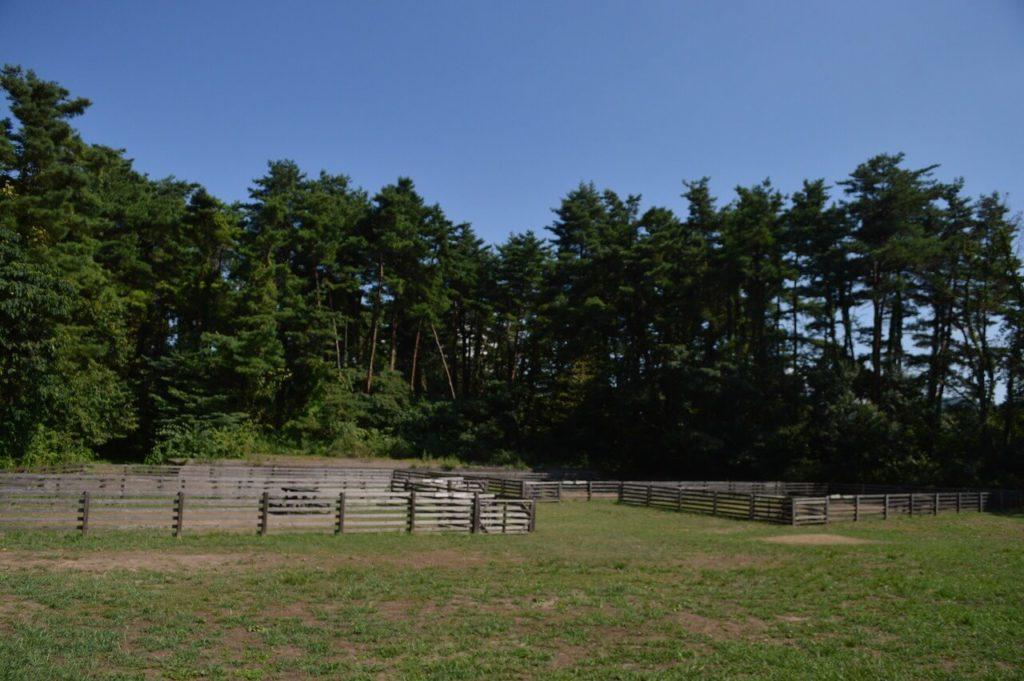 神鍋高原キャンプ場のドッグランサイト