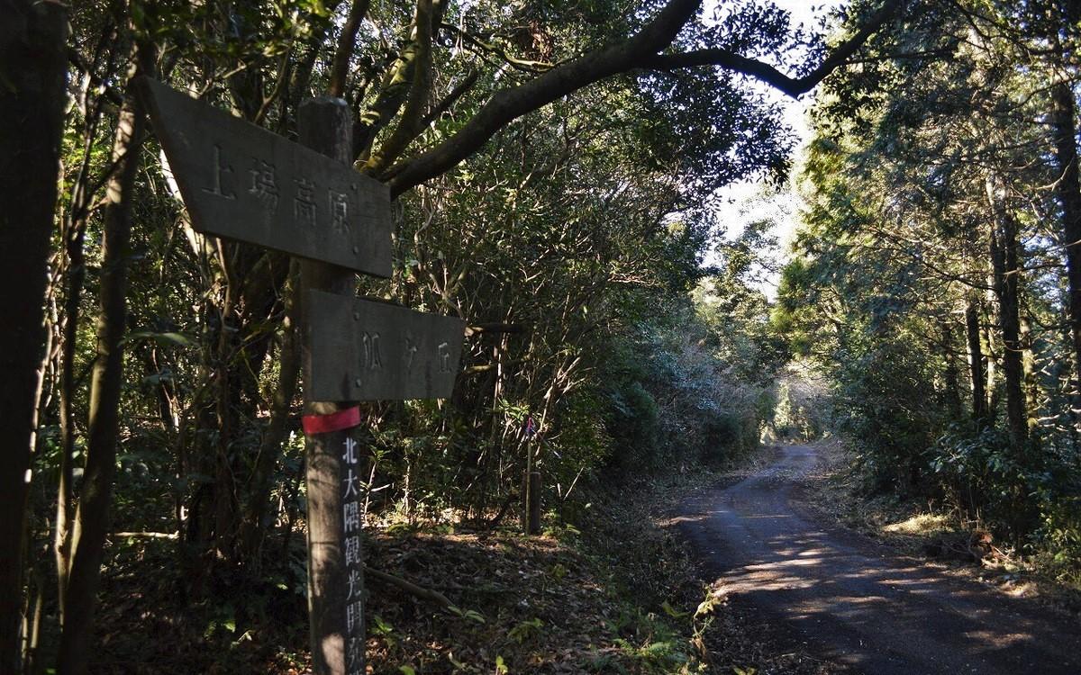 狐ヶ丘への道のり